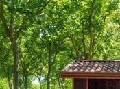 Apre Parco Volturno: area pic-nic, solarium campi calcio. Ingresso gratuito