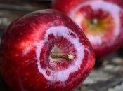 Perché mela giorno leva medico torno?