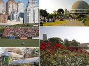 Palermo quartiere esteso tutta città Buenos Aires.