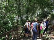 Orto Botanico Arcadia Grisolia: nasce nuova collaborazione