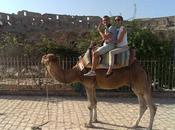 Tunisia road. Giorno visita dell'anfiteatro delle case troglodite Matmata