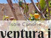 Fuerteventura insolita: food tour solo) NaTOURal Adventure