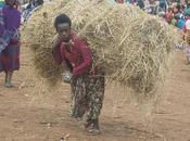 Etiopia Dorzé Chencha