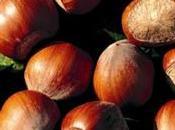 Nocciole piemontesi: qualità ricette tipiche proprietà sagre Piemonte