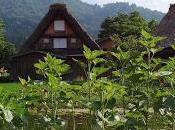 magico Paese Levante Takayama Kanazawa, passando Shirakawa-go