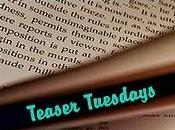 Teaser Tuesdays (20)