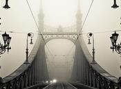 fascino della nebbia nella fotografia