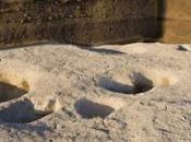 Egitto, scoperto sito neolitico Delta