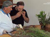 Geo&Geo Vincenzo Mancino formaggi Lazio