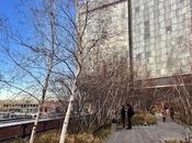 High Line Manhattan, York: progetto, mappa, percorso