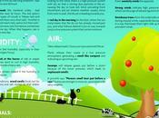 Consigli pratici previsioni meteo