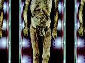TANATOMETAMORFOSI Pietrificatore. collezione anatomica Paolo Gorini
