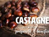 Castagne: proprietà, benefici controindicazioni