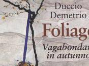 DEMETRIO DUCCIO, Foliage. Vagabondare autunno, Raffaello Cortina editore, 2018. Indice libro