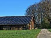 Rinnovabili: amianto sostituito fotovoltaico, ecco incentivi