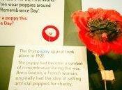 """Londra, """"Poppy Day"""" Centenario dell'Armistizio 1918-2018"""