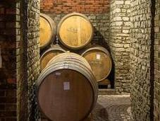 martino vini novelli cantine storiche