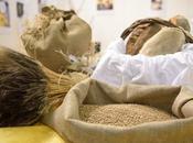 Mercato Mediterraneo: Roma fiera dedicata all'agroalimentare Mare Nostrum