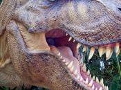 dinosauri lucertoline giallo-verdi
