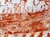 Molfetta, scoperto affresco medioevale