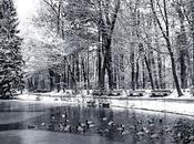 iosonorockmaballoiltango:Sonček Nuhanović anatre d'inverno