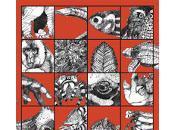libro degli esseri malapena immaginabili Caspar Henderson
