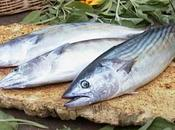 Pesce azzurro: scelta consapevole, salute l'ambiente!