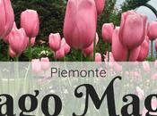 Weekend Lago Maggiore: cosa vedere Stresa oltre