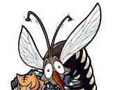 rimedi contro fastidiose zanzare!