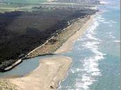 bassona spiaggia ravenntae, chiusa nudisti