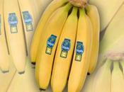 Preparatevi giornata mondiale della banana Chiquita Snapchat