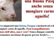 Buona Pasqua anche senza mangiare carne agnello!