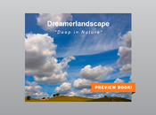 Dreamerlandscape Deep Nature