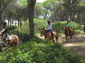 Passeggiate cavallo Sardegna