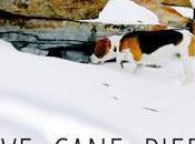 Neve, cane, piede Claudio Morandini
