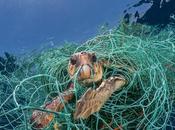 Planet plastic: plastica essere risorsa?
