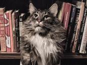 Libri leggere