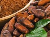 Mousse brownie alle nocciole (ricetta senza glutine)…