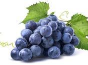 Strudel all'uva nera uvetta…