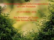 """""""Giornata mondiale della consapevolezza sulla perdita perinatale infantile"""" Evento Benedetto Tronto"""