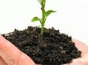 Crescita mentale: acquisizione conoscenza, invalidazione, incremento conoscitivo valore dello stress.1 parte