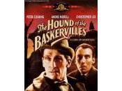"furia Baskerville"""