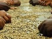 nostra tazza caffè
