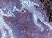 proposito degli alieni.... Francesco Toscano Enrico Messina. Prima Edizione 2011. Capitolo extraterrestri nella storia dell'umanità. pag.