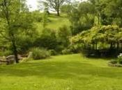 Legge orti urbani giardini pensili