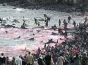 massacro alle Isole
