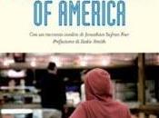 Consigli lettura: giovane letteratura americana, Auster, Schnitzler, Ginsberg