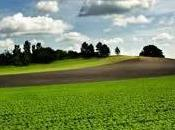 onda Monferrato: arriva Linea Verde