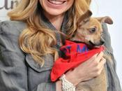 "Kristin Bauer rivela: Lavorare Alexander Skarsgard ""Fangtastic""!"