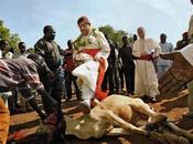 Mazzi, cani Chiesa rotto